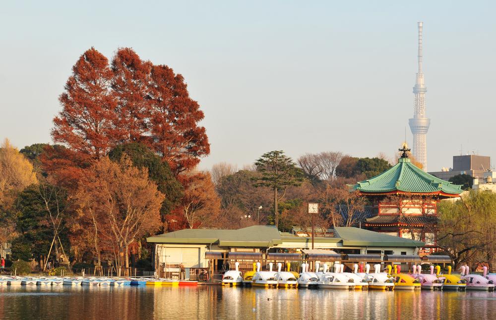 ミュゼ 上野広小路店への行き方・おすすめのカフェやレストランまとめ