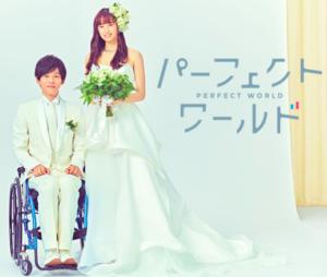 恋愛ドラマ-パーフェクトワールド