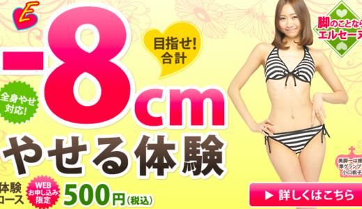 エルセーヌのcmモデルとは?中澤裕子やミニモニ。RINAが出演していた!