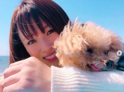 深田恭子の出演ドラマ「はじこい」の満足度は最高!新作ドラマ「ルパンの娘」も話題!