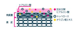 ちふれ-img