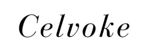 【2021年】セルヴォーク(Celvoke)福袋情報!購入方法や中身ネタバレ