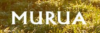 【2021年】MURUA(ムルーア)の福袋情報!12,100円で中身はムートンブルゾンを含む計5点とたっぷりお得♩
