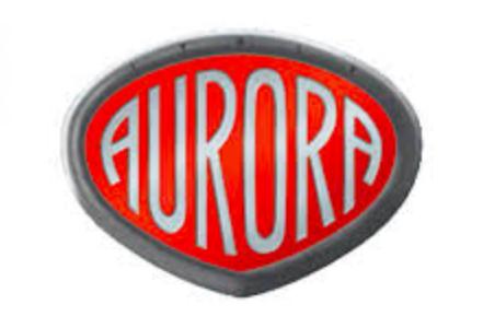 【2021年】アウロラ(AURORA)福袋情報!予約・購入方法や中身ネタバレも紹介